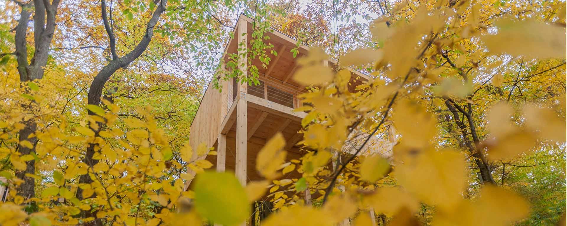 treehouses-noszvaj-lombhazak-fo-kep03