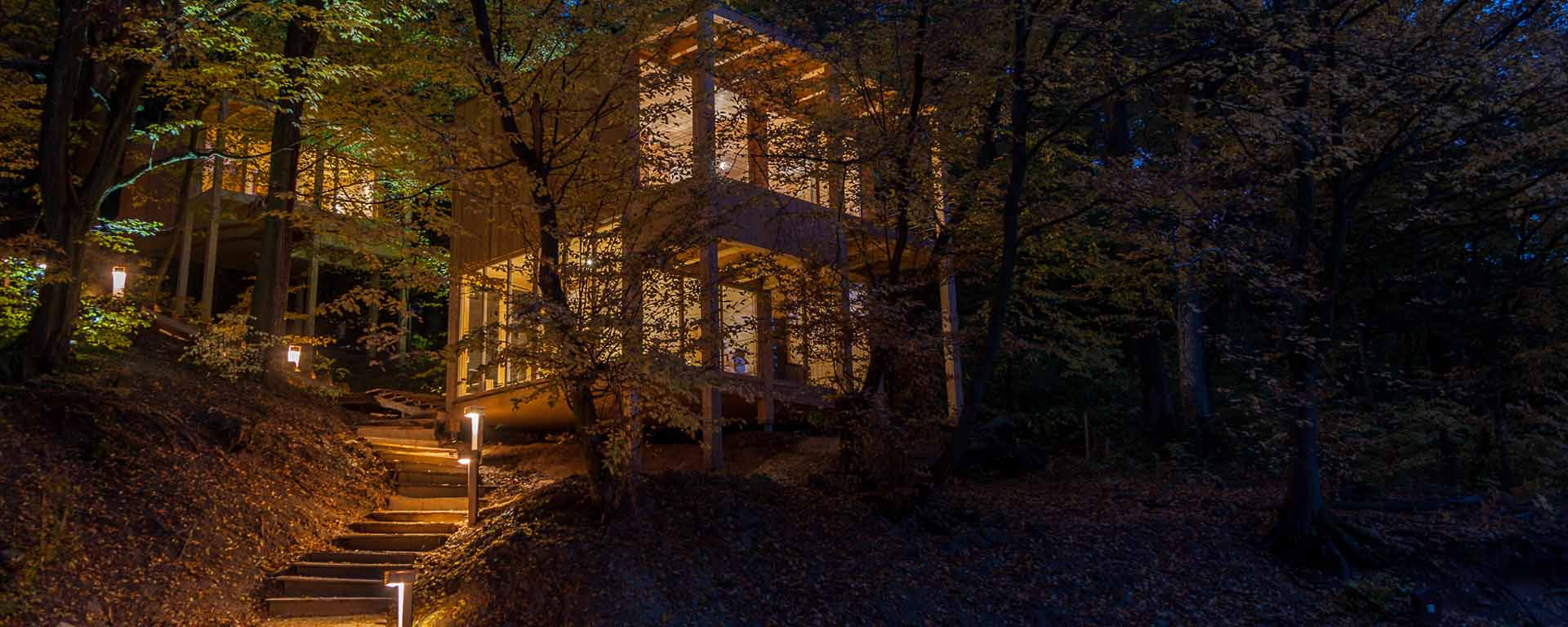 treehouses-noszvaj-lombhazak-fo-kep04